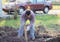 joe the rehabber trench